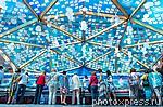 4380804 / Фестиваль `Рыбная неделя`