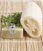 4468305 / Natural lufah sponge with thyme soap