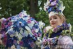 6208682 / Парад цветов