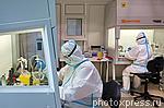 6210179 / Медицинская лаборатория