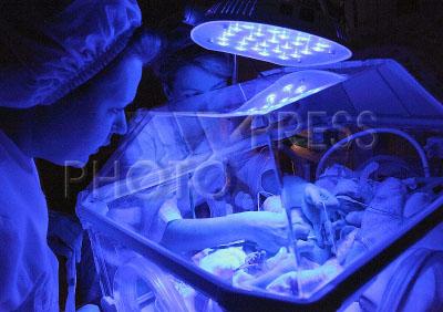 Какой выход рождаемостив инкубаторе видео