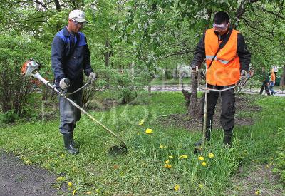 про экологию услуги на авито скошу траву абакан евро Курске