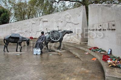 Памятник погибшим в войне животным лондон великобритания данила мастер цены на памятники 94