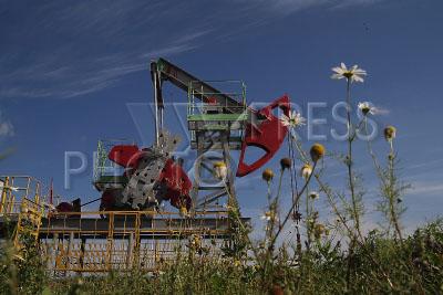 3994519 / Добыча нефти. Добыча нефти ОАО АНК `Башнефть`. Нефтяная вышка-качалка.