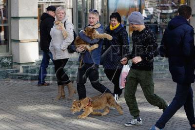 4195128 / Прогулка со львятами. На снимке: молодые люди со львятами идут по улице.
