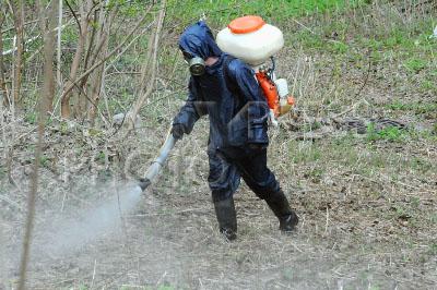 4218748 / Борьба с клещами. Обработка территорий от клещей. На снимке: дезинфектор.