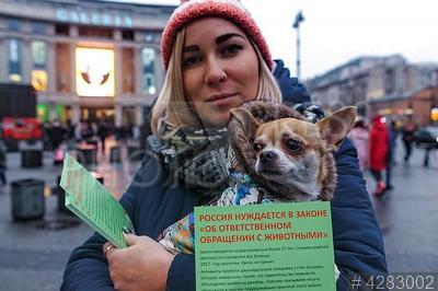 4283002 / Акция в защиту животных. Акция в поддержку принятия закона `Об ответственном отношении к животным`. Участница с собакой на руках.