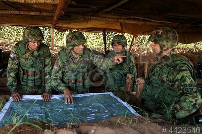 4423546 / Военные учения. Совместные учения военных России и Сербии.