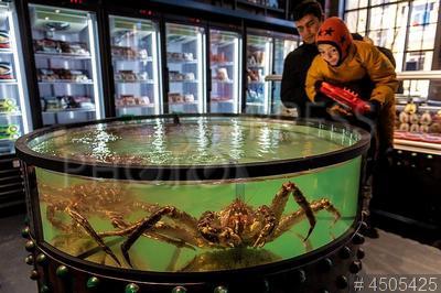 4505425 / Живые крабы. Фудмолл `Депо. Москва`. Мужчина и ребенок около аквариума с живыми крабами.