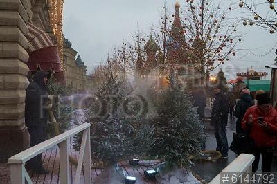 6144792 / Декорирование елок. Подготовка к Новому году. Декорирование елок искусственным снегом на Красной площади.