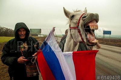 6149408 / Аднан Аззам. Сирийский путешественик Аднан Аззам идет пешком в Москву из Дамаска, чтобы подарить президенту России арабского скакуна в благодарность за помощь России в борьбе с тероризмом в Сирии.