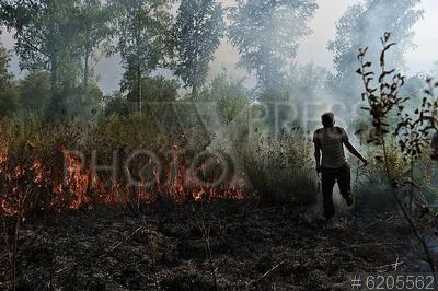 6205562 / Лесные пожары. Лесные пожары в Омской области. Бригада лесохраны в поселке Большие Уки.